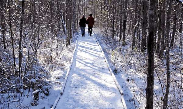Except for the crunch of snow and the creaking of the icy planks underfoot, a couple strolls in silence Sunday afternoon, Nov. 28, 2010, on the Orono Bog Boardwalk, on Sunday afternoon, the final day of the season for the popular Bangor-area nature walk.  (Bangor Daily News/Scott Haskell)