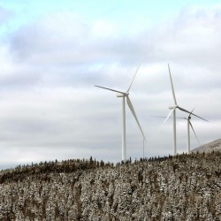 Wind energy can power much of East Coast, study says