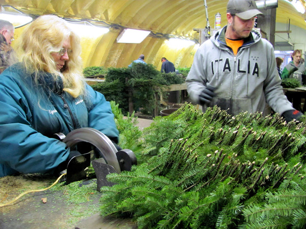 Lyn Morrison of Mercer and Jayson Pearson of Skowhegan collaborate in the construction of balsam fir garland on Tuesday, December 7, 2010 at Central Maine Wreath in Skowhegan. Company owner Ambrose &quotTom&quot McCarthy Jr. estimates that the company produced more than 8 miles of garland this year, almost all of it made by Morrison. (Bangor Daily News/Christopher Cousins)
