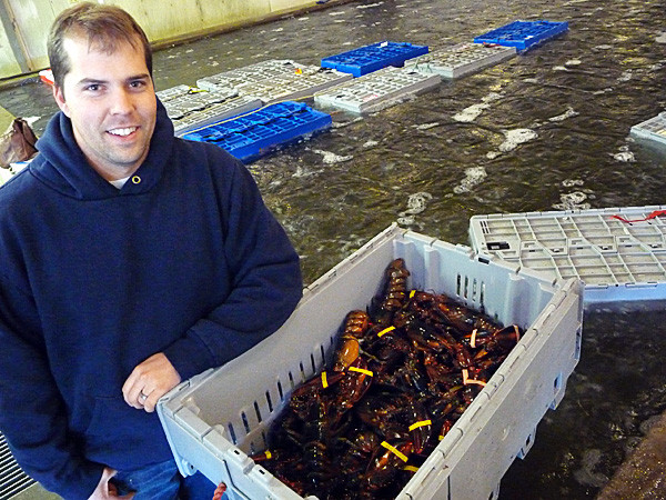 photo by mack to go with story slugged LobstaDinna Chad Dorr, operator of Door Lobster Co. Inc. in Milbridge has created the first app (application) that will allows customers to order lobsters through their cell phones. Once ordered, the lobsters will arrive within 24 hours after being caught on a customer's doorstep. &quotThis is going to be a record-breaking year for the Maine lobster catch,&quot Door said Thursday, Dec. 9, 2010. &quotIt shows that the fishing practices of our lobstermen is working and this is a sustainable industry.&quot Dorr said the app taps into both the technology revoluation and the desire for consumers to buy local, buy from family businesses, and support a sustainable business. (Bangor Daily News/Sharon Kiley Mack)
