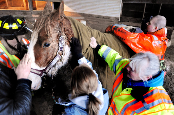 COLD-WATER RESCUE   Barn staff and rescuers put blankets and heat packs on a 2 1/2-year-old horse names Remmington after he was rescued Friday from an iced-over farm pond at Nag-A-Bon Acres farm in sTetson. Owner Mark Merrill said he and another person spotted the horse as they went to feed their animals. When they could not pull the horse from the water, they called 911 and units from Stetson, Levant and Carmel came to the scene. The hole in the ice was enlgarged behind the horse and one of the rescuers got into the icy water wearing a cold-weather resccue suit to make sure its hind legs were positioned property. After everything was set they pulled Remmington from the pond with the aid of a tractor. Merrill said the horse was not injured.  (BANGOR DAILY NEWS PHOTO BY GABOR DEGRE)