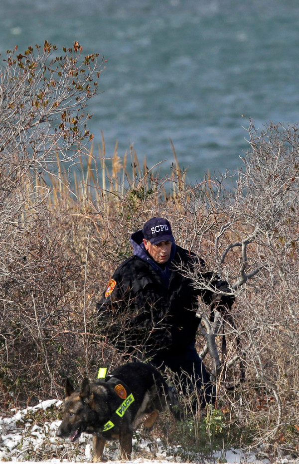 Police search in the brush by the side of the road along Cedar Beach, near Babylon, N.Y., Tuesday, Dec. 14, 2010. Police looking for a missing prostitute on Long Island's Fire Island have discovered three bodies and a set of skeletal remains near Oak Beach since Saturday. Investigators are considering the possibility that a serial killer may have dumped four bodies along the same quarter-mile stretch of beachside road, a police chief said Tuesday. (AP Photo/Seth Wenig)