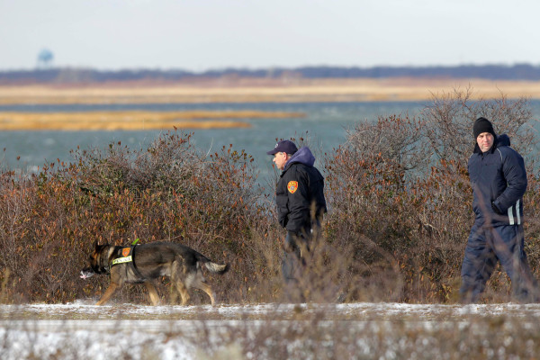 Authorities search in the brush by the side of the road at Cedar Beach, near Babylon, N.Y., Tuesday, Dec. 14, 2010. Police looking for a missing prostitute on Long Island's Fire Island have discovered three bodies and a set of skeletal remains near Oak Beach since Saturday. Investigators are considering the possibility that a serial killer may have dumped four bodies along the same quarter-mile stretch of beachside road, a police chief said Tuesday. (AP Photo/Seth Wenig)
