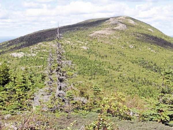 North Traveler is the last summit of a 10-mile circuit hike called the Traveler Loop Trail in the north end of Baxter Park. The hike was one of the most memorable of 2010 for Brad Viles, because his hiking partner, Susan Dow,&quothiked my legs ragged.&quot Brad Viles photo
