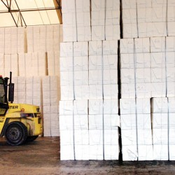 Dairy cow, pulp exports help Port of Eastport generate $250,000 surplus in 2012
