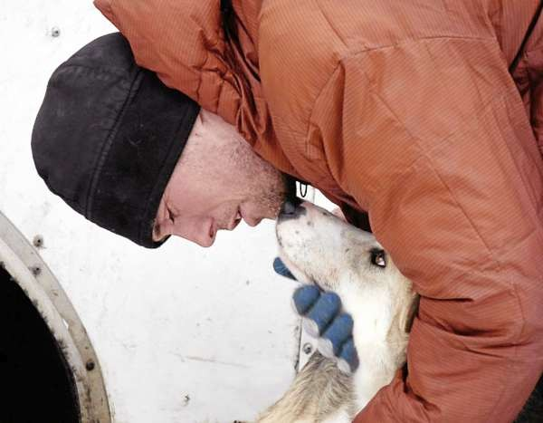 James Barron, an eight-time Iditarod finisher, is making his first appearance at the Can-Am Crown International Sled Dog Race, which begins Saturday morning in Fort Kent. Barron spent time with his dogs on Thursday, including Classic, to make the final decision on which dogs will run the race.   PHOTO BY JULIA BAYLY  CAPTION  &quotMushing sled dogs is more than just racing,&quot Can Am 250 musher Jason Barron said. &quotIt's a while lifestyle that revolves around the dogs.&quot Barron, an 8-time Iditorad finisher is making his first appearance at the Can Am which starts Saturday.  Barron spent time with his teammates, including Classic, on Friday making the final decision which dogs will run the race. (NEWS Photo by Julia Bayly)