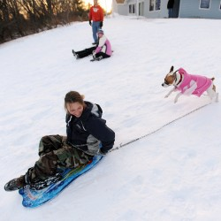 Montville race honors old-school sledding
