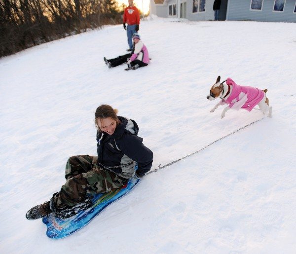 KaRie Laird(CQ) and her dog Woman take off down the Watchmaker Hill in Bangor whil out sledding Thursday afternoon. (Bangor Daily News/Gabor Degre)