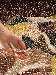 What's not to love? Dry beans are beautiful, inexpensive, versatile, delicious and good for you.