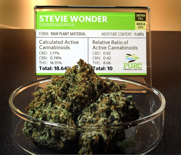 Stevie Wonder, a strain of medical marijuana at Pure Medical Center is displayed with all of it's testing information to help patients and dispensers know the strength and traits of the plant.