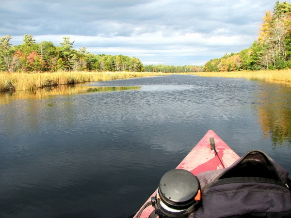 The front end of my Bill Trotter's kayak pointed down Northeast Creek on MDI in the fall of 2008. (Bangor Daily News/Bill Trotter)