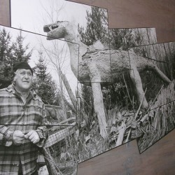 Houlton finishes cleanup of artist's property
