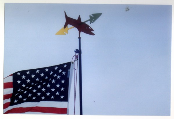 Peter Ingraham of Linneus calls this sculpture atop his a 20-foot flagpole his redneck fish finder.