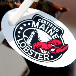 Lobster task force focused on long term