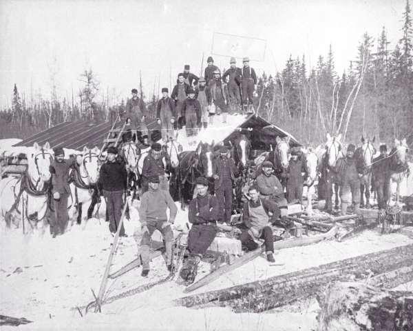 Logging camp.