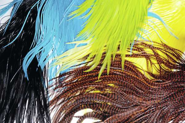 Following trendsetters like Ke$ha, fashionistas are adorning their hair with the colorful feathers used by fly fishermen.