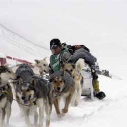 Marchildon wins one of closest, toughest Can Am Crown sled dog races