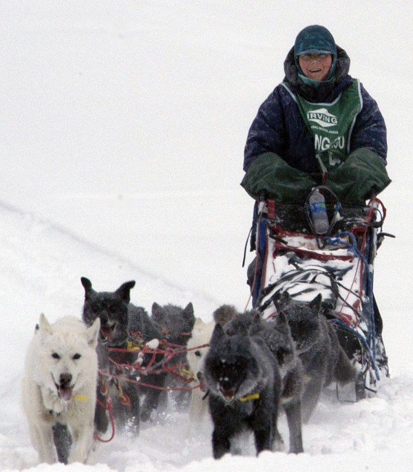 Despite mushing through what was arguably the toughest Can Am Crown 250 race in the event's 19-year history, 62-year-old Jamie Nelson is all smiles as she  guides her team to a third-place finish - just over a minute out of first place Monday afternoon.