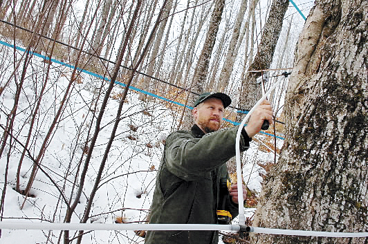 """I love the product and I love being outside,"" said Lee Kinney of Kinney maple Supplies in Knox as he and other workers finished tapping 8,000 maples for the season."