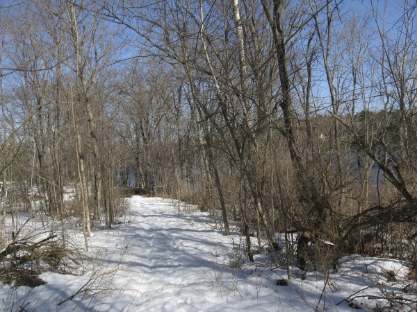 Early spring temperatures soften the snowpack on Marsh Island's Penobscot River Trail, maintained by the Orono Land Trust.