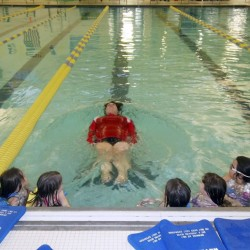 Y swim program sees growth