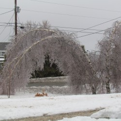 Forecast for New England includes snow, freezing rain