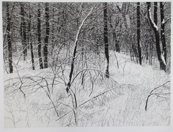 Vaino Kola, a Deer Isle artist, is pulling his etching 'Norton Woods 1' along with four other works from display at the State House in protest of Gov. Paul LePage's order to remove a labor-themed mural from the lobby of the Department of Labor.