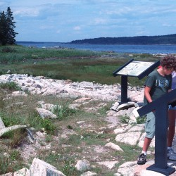 Favorite Places in Maine: Sears Island