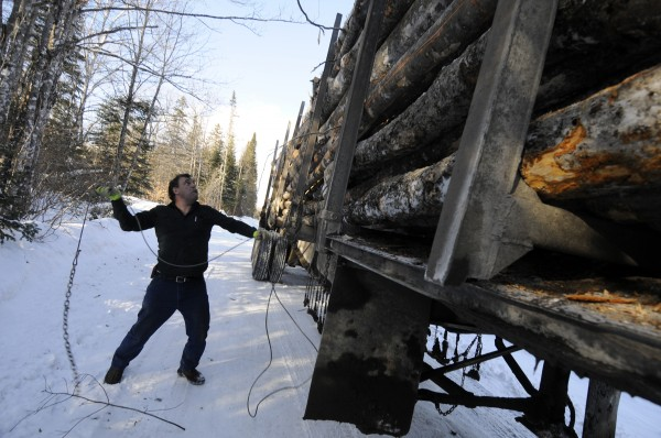 Wayne Daggett throws up one of several chains to lash a timber payload at a harvesting area in Wellington, Maine on Feb. 10, 2011 Daggett runs Charles Daggett Inc., based in Topsfield, and hauls wood for private contractors. By far, trucking dwarfs other forms of transport in Maine despite the recession and despite federal regulations imposed on the trucking industry.