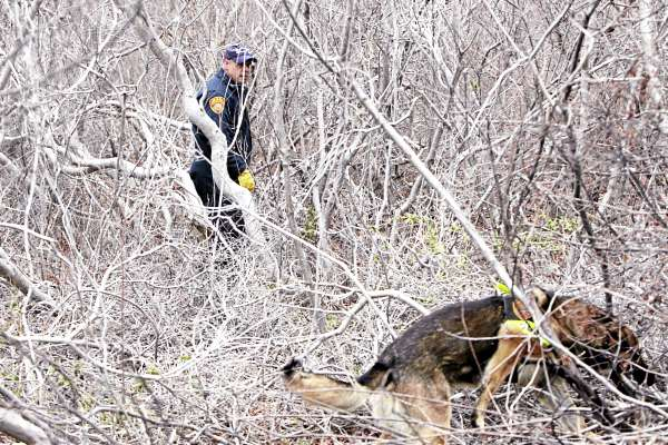 Emergency personnel and cadaver dog search the thick brush on the side of the road near Oak Beach, N.Y., Monday, April 4, 2011. Searchers perched in fire truck bucket ladders Monday scanned dense, tick-infested undergrowth Monday in a search for more victims of a possible serial killer near where five sets of human remains have been found.
