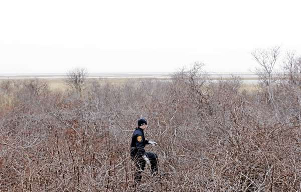 Emergency personnel search an area on the side of the road near Oak Beach, N.Y., Monday, April 4, 2011. Searchers perched in fire truck bucket ladders Monday scanned dense, tick-infested undergrowth Monday in a search for more victims of a possible serial killer near where five sets of human remains have been found. (AP Photo/Seth Wenig)seach the scrub on the side of the road near Oak Beach, N.Y., Monday, April 4, 2011.