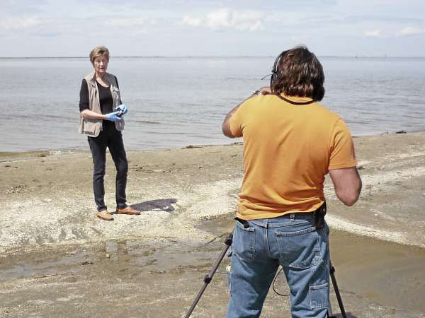 Dr. Susan Shaw of the Marine Environmental Research Institute in Blue Hill displays oiled beach sediment samples from Grand Isle State Park in Louisiana for an Animal Planet documentary. Shaw returned to the Gulf area to gather soil and water samples and specimens of shellfish and fish as part of MERI's Ecotox program, which is studying the effects of the Deepwater Horizon oil spill on the Gulf.