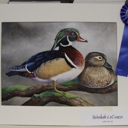 North Yarmouth teen wins waterfowl art contest