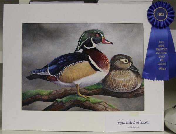 An acrylic painting of a resting pair of wood ducks by Rebekah LaCourse of Hollis Center will appear on the 2011 Maine Waterfowl Stamp.