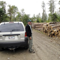 Big Squaw Mountain owner accused of harvesting timber on restricted land