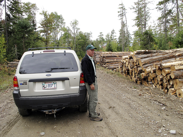 Jensen Bissell, director of Baxter State Park, surveys the stacks of logs from a recent timber harvesting operation in the park's Scientific Forest Management Area in 2009. Comprising roughly 29,000 acres in the park's northwest corner, the SFMA is the only location in Baxter where logging occurs. Former Gov. Percival Baxter set up the SFMA as a place where cutting-edge forestry and research could be carried out.