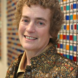 Patricia Bixel new dean of Husson School of Science and Humanities