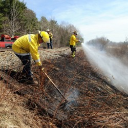 Grass, brush fire season gets an early start