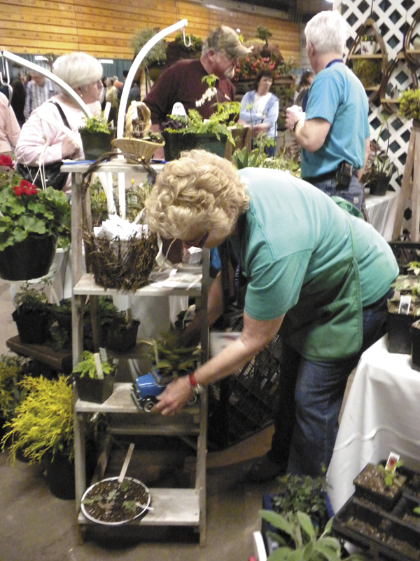 Sonia Cianchette, owner of Through the Garden Gate, in Corinna places a potted plant on display at the 20th annual Bangor Garden Show on Saturday.