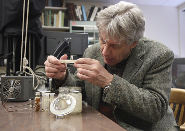 Dr. Jonathan A. Coddington, Associate Director of Research and Collections, examines vials of preserved Brown Recluse Spiders at the Smithsonian Institution National Museum of Natural History in Washington.