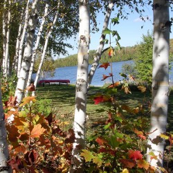 The colors begin to change near Echo Lake on a beautiful day at Aroostook State Park in Presque Isle.