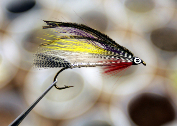 A streamer fly designed to resemble a smelt is seen at the Pone Tree Store Grand Lake Stream recently.