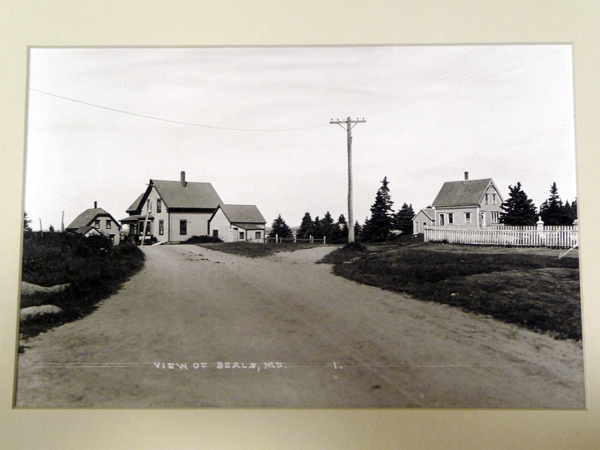 A postcard from the Penobscot Marine Museum's collection of more than 100,000 images shows Elm Street on Beals Island as it looked at the turn of the 20th century. To the right is the cemetery where the island's first resident, Manwarren Beal, is buried.