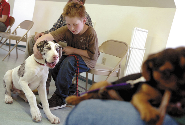 Warren Higgins, 10, of Sullivan, calms his 16-week-old Great Dane puppy Thunder during the Puppy Headstart training class at Green Acres Kennel Shop in Bangor on Thursday. The class, which encourages family attendance, focuses on topics which include  canine language, management, play biting, nutrition and handling.