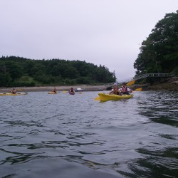 Your summer plans may include a trip to the coast and a guided paddling outing. These folks are enjoying a day trip with Castine Kayak Adventures near Holbrook Island.