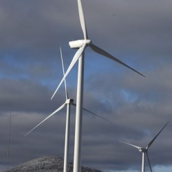 Businesses discuss opportunities in wind power