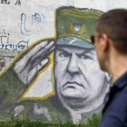 Mladic's arrest draws divided reaction in Bosnia