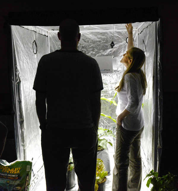 Melainie Baxter looks at the portable grow room that Ray Logan set up during the second Marijuana State University medicinal marijuana grow class at the Fireside Inn in Auburn on Saturday afternoon.  Baxter came from Kennebunk with her husband, Cliff, (left) who is undergoing chemotherapy. The couple was looking for tips on how to grow marijuana.