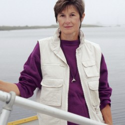 Maine scientist part of the solution in gulf