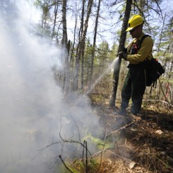 County forest rangers deploy to fight out of state wildfires